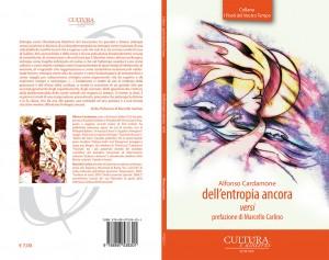 dell'entropia ancora - Alfonso Cardamone